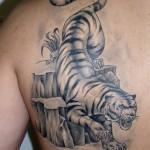 Тигр (эскиз из Украинского тату журнала)