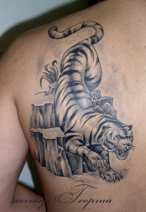 Тигр эскиз из украинского тату
